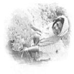 তাসনিম.মুন্নী